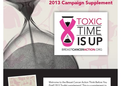 Breast Cancer Action Toolkit & Supplement