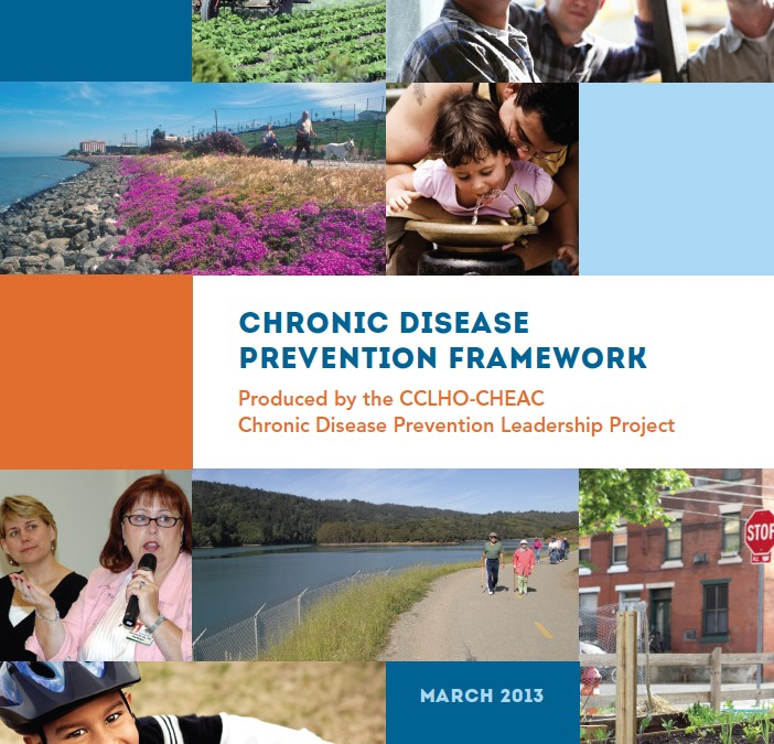 Chronic Disease Prevention Framework