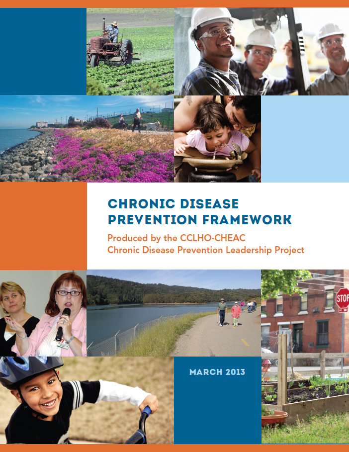 Chronic Disease Prevention Framework